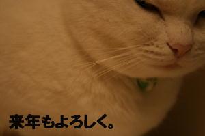 12.31(bc).JPG